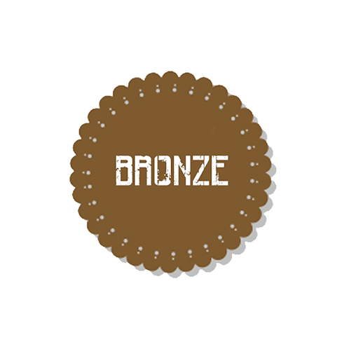 BRONZE - TM AWS UPGRADE PACKAGE