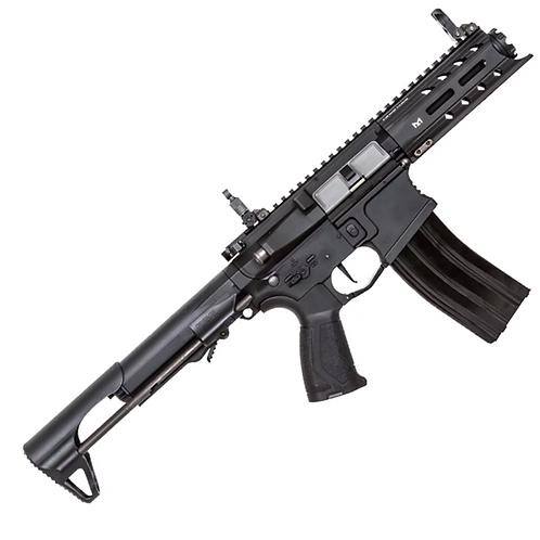 G&G ARP 556 AEG