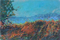Marlborough downs acrylic 38x25
