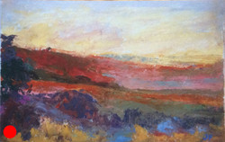Pertwood Down oil SOLD