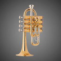 Trumpet, Piccolo - 'Budden'.jpg