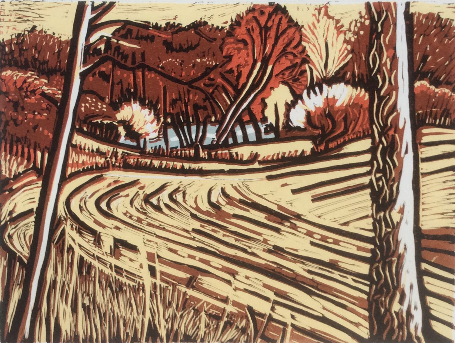 Fonthill Lake lino print 26x36