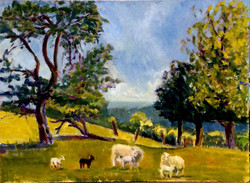 Sheep may safely graze oil 61x46