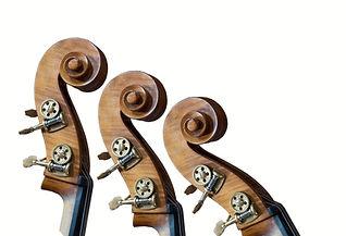 violin%20top%202_edited.jpg