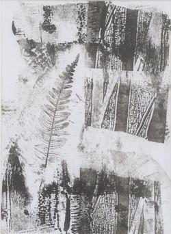 Woodland 1 print 20x26