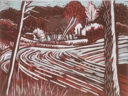 Fonthill Lake Winter lino print 26x36