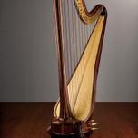 Harp - Salvi Aurora, 'Promenaders - Char