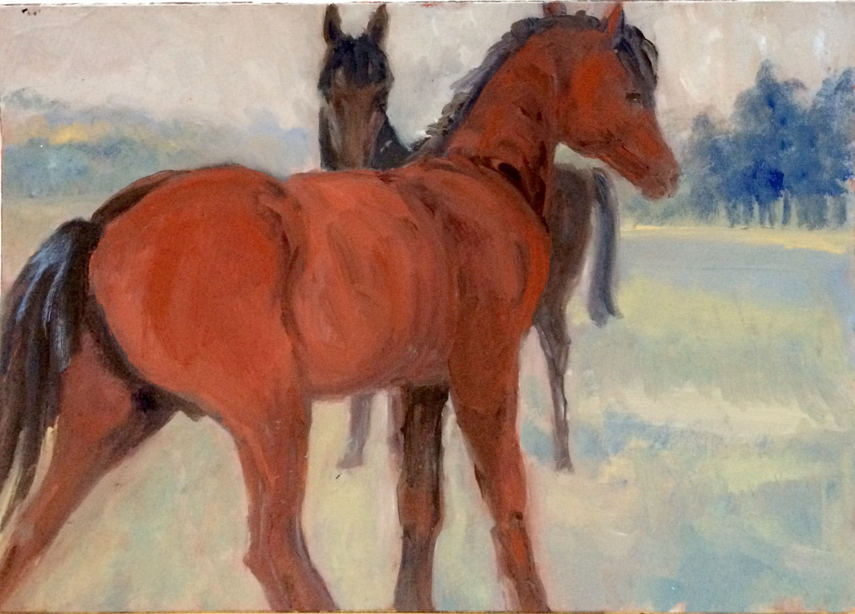 Red horse oil 41x29.5