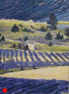 Lavender fields SOLD