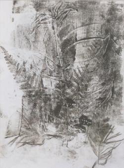 Woodland 2 print 20x28
