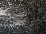 """""""Path in the forest"""", 40x60cm, Oil on board, 2020, (Price: 550 EUR)"""