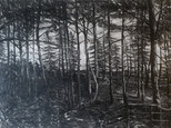 """""""Holzweg 6: Map and territory"""", 40 x 60 cm, oil on board, 2020 (Price: 850 EUR)"""