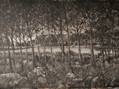 Speeling by the lake, 40x60cm, oil on board, 2020 (Price: 850 EUR)