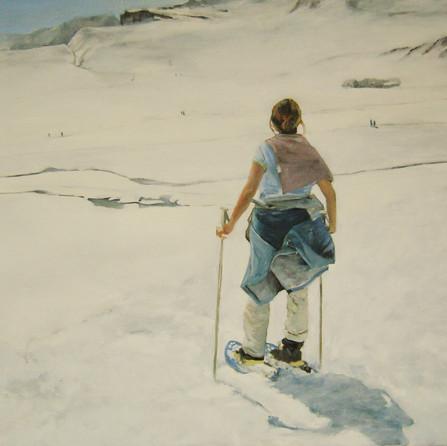 Pyrenees mountain range,  80x90cm , oil canvas,  2008