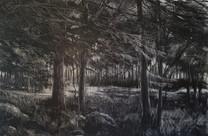 """""""Holzweg 2"""", 40 x 60 cm, oil on canvas, 2020"""