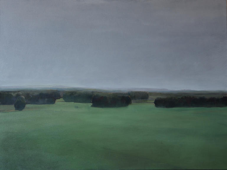 """""""The green landscape"""", 96 x 72 cm, Oil on Canvas, 2015 (Private collection)"""