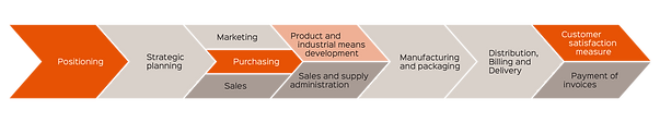 Value chain of an organization