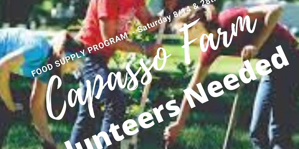 Volunteer Feeding Program
