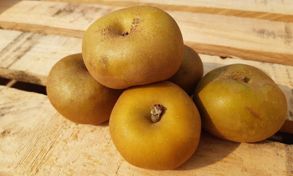 Pommes Chanteclerc 1kg (environ 6/8 pièces)