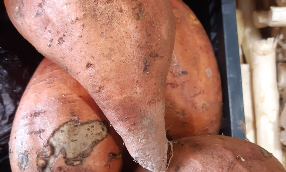 Patate douce 1kg