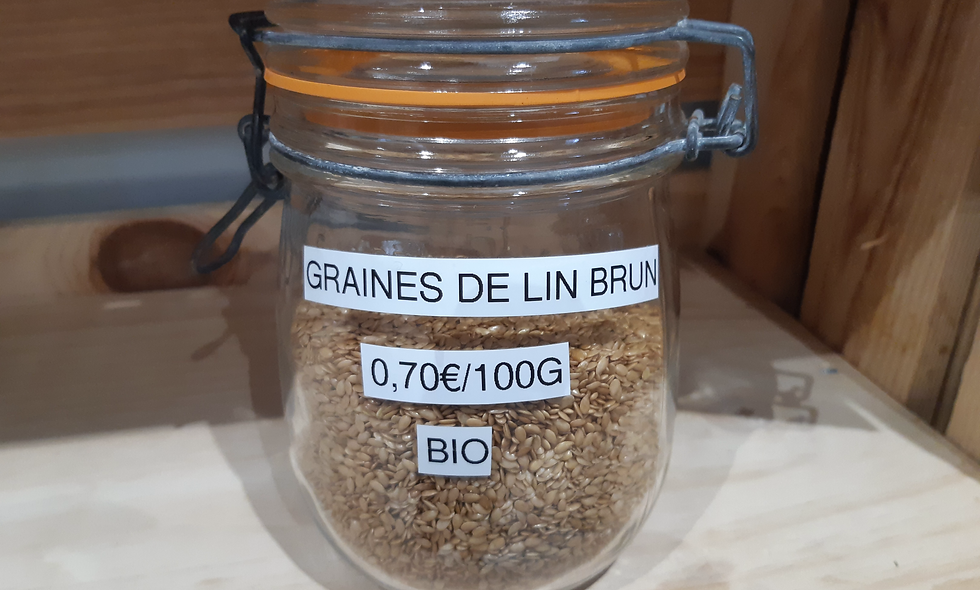 Graines de lin brun Bio (100g)