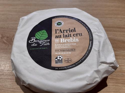 Camembert de brebis demi