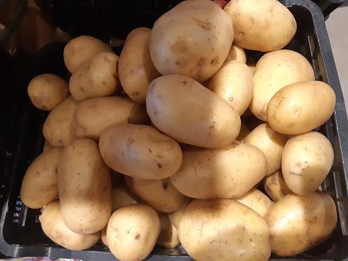 Pomme de terre Agata (1kg) nouvelle recolte