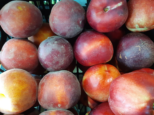 Nectarines blanches (environ 500g) 3/4 pièces