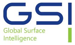 Global Surface Intelligence
