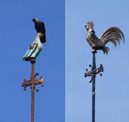 Bird before & after.jpg