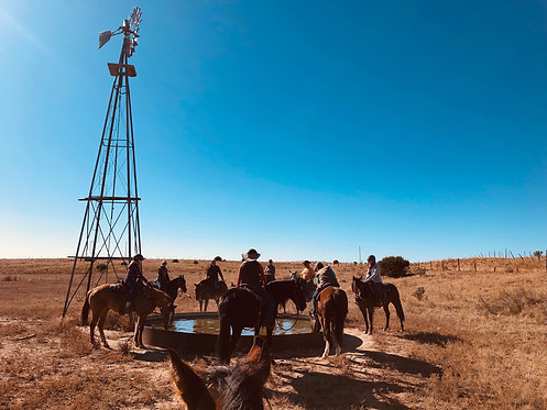 Trail Ride Clinic Spot