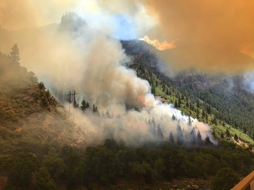 Salt Therapy for Wildfire Smoke and Firefighter Discount