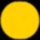 Hemp OZ_PON_logo_yellow (1).png