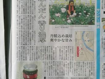新潟日報様に掲載されました!
