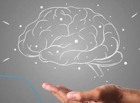 Autoconhecimento & Neurociência