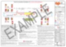EXAMPLE-1.jpg