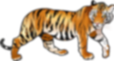 tiger-smaller.png