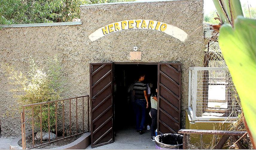 Herpetario - Parque Morelos