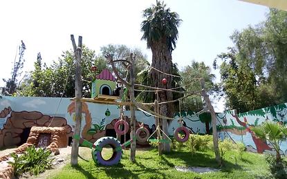 Mono Araña - Parque Morelos