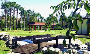 Parque-Morelos_edited_edited_edited_edited.jpg