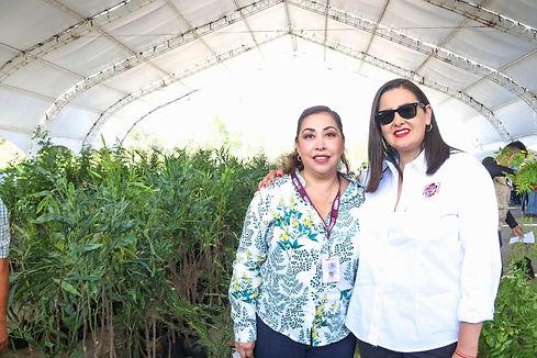 reforestacion2.jpg