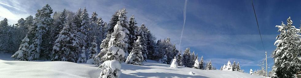 Soleil hivernal au mazotBD.jpg