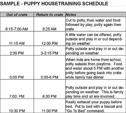 Puppy Training Schedule.jpg