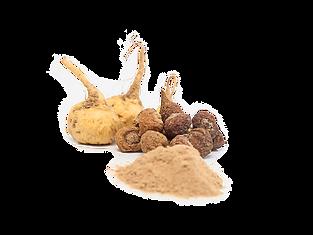 kisspng-maca-organic-food-junn-peru-root