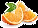 toppng.com-orange-slice-transparent-imag