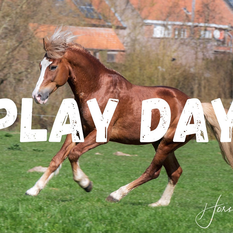 Play day ga voor Galop