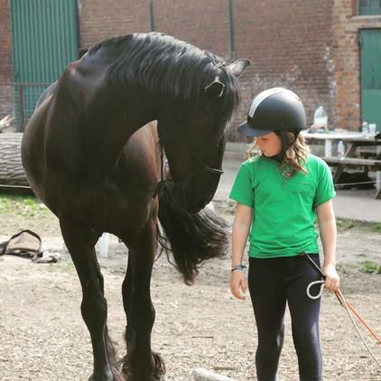 Last ponycamp of the summer 🐴#paardensp