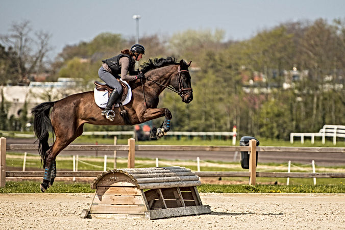 2019-04-10 Joris Eventing-_-small jpg_04