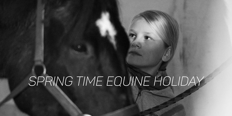Spring time equine holiday
