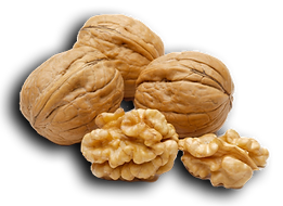 walnut.png